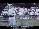 香港经典老电影(南拳北腿斗金狐)胡正利,刘忠良,王将主演