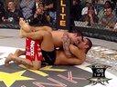 Antonio Silva vs. Ricco Rodriguez