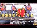 【一风之声】黄浦江上肥猪流