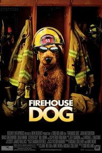 点击播放《消防犬》