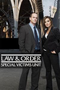 法律与秩序:特殊受害者第十四季