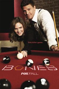 《识骨寻踪第七季》主要讲述的是双B双恋,终