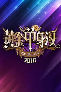 黄金单身汉 2016