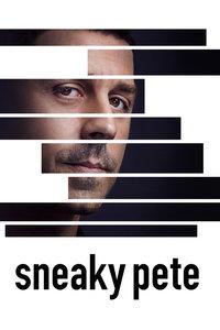 诈欺担保人 第一季/以黑制黑/冒牌货/Sneaky Pete