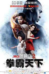 冬荫功2:拳霸天下国语版