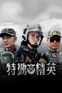 特勤精英 DVD版