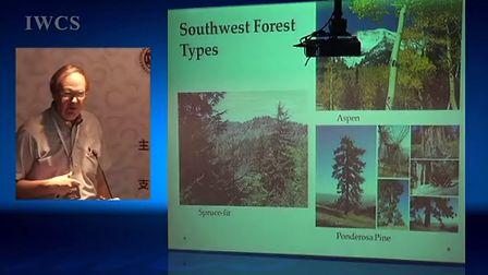 原著民和西班牙人对美国西南部木文化的影响