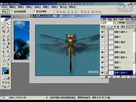 Photoshop从头学起第83集