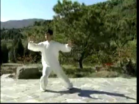 24式太极拳分解教学高清图片