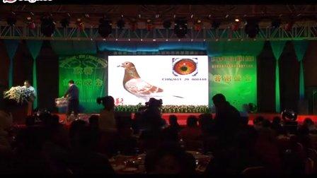 频道-搜鸽网的视频-优酷视频子夜的视频图片