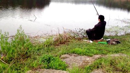 手杆博鲤实战40钓鱼视频大全钓鱼视频野钓实
