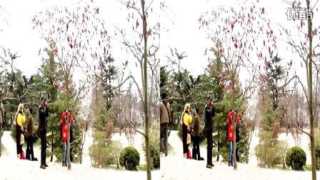 中山公园樱花(左右) 青岛3D—在线播放—优酷网,视频高清在线观看