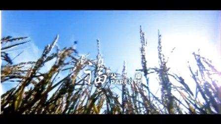 福 - 王菲菲 MV 高清在线观看