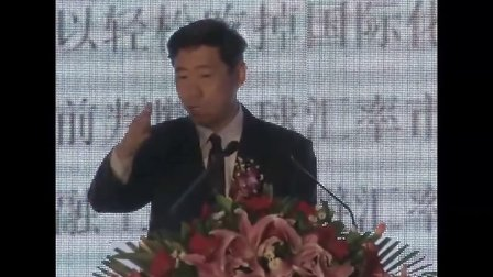 李稻葵视频_李稻葵演讲视频--汇率波动下的国际化选择