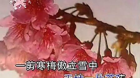 张明敏- 一剪梅