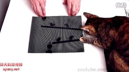 神級DIY:令人驚訝的動態幻覺