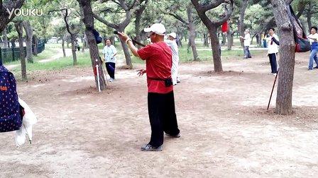 陈式心意混元太极拳24式王教程老师教学版在360全景书海图图片