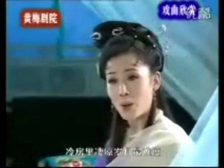 韓再芬主演經典黃梅戲電視劇女駙馬全劇(6)素珍推婚